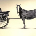 cart_before_the_horse1
